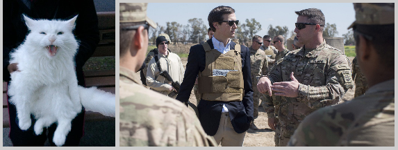 Sugar and 'General' Kushner
